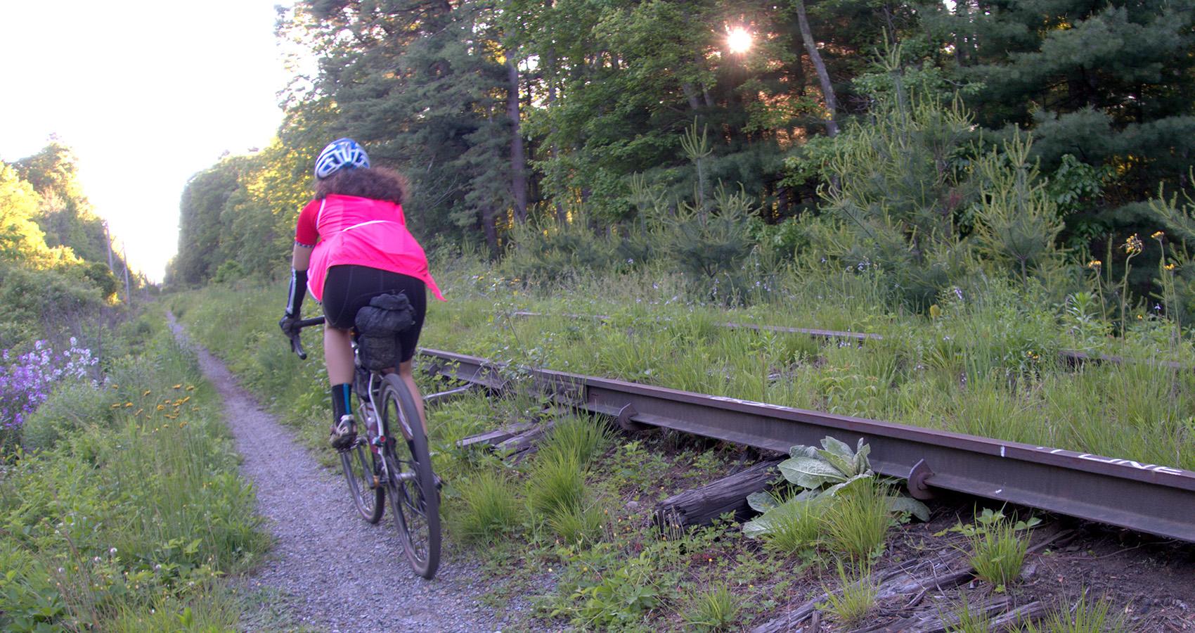 Evergreen Gravel Along Train Tracks
