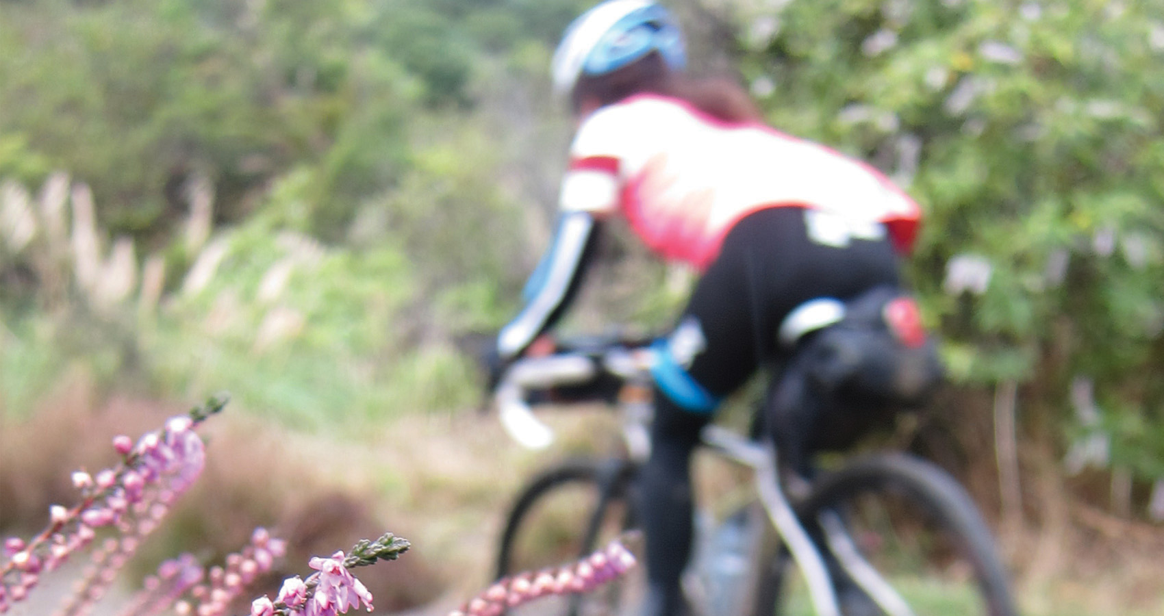 a rider too swift to catch with autofocus flies by some beautiful pink flowers in New Zealand